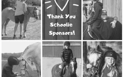 Thank You Schoolie Sponsors!